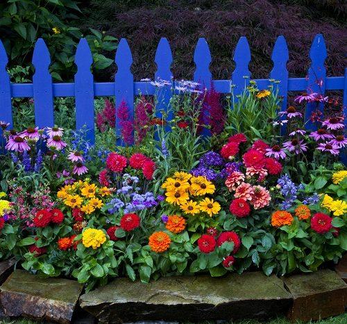 palisada w ogrodzie